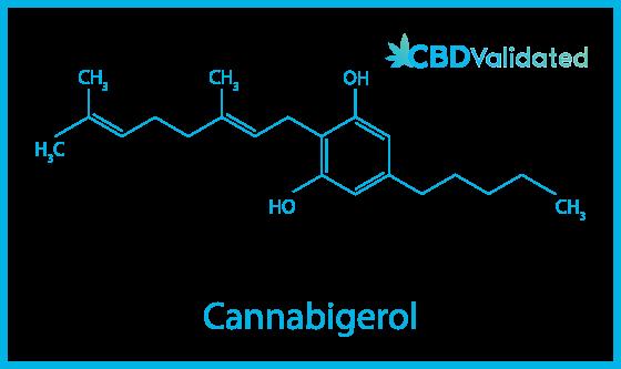 The molecular formula of cannabigerol (CBG)